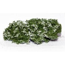Flowering Shrubs White 1/35